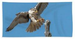 Landing Prairie Falcon Hand Towel