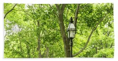 Lanterns Among The Trees Hand Towel