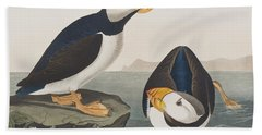 Large Billed Puffin Hand Towel