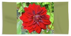 Hand Towel featuring the photograph Large Red Dahlia by Jay Milo