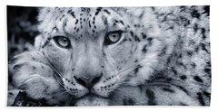 Large Snow Leopard Portrait Bath Towel
