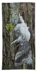 Large Tolype Moth Bath Towel