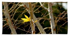 Hand Towel featuring the photograph Last Leaf by Kume Bryant