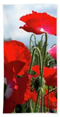 Hand Towel featuring the photograph Last Poppies Of Summer by Baggieoldboy