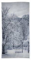 Last Winter's Dream Hand Towel