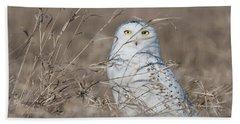 Last Year Of The Snowy Owls... Bath Towel