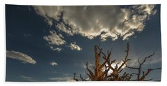 Late Afternoon In The Bristlecone Forest Hand Towel