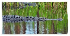 Hand Towel featuring the photograph Later Gator by Al Powell Photography USA