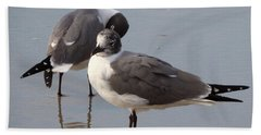 Laughing Gull Bath Towel