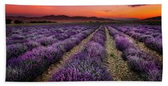 Lavender Fields At Sunrise Hand Towel