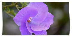 Hand Towel featuring the photograph Lavender Flower by AJ Schibig