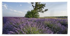 Bath Towel featuring the photograph Lavender Provence  by Juergen Held