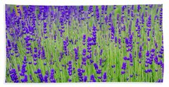 Lavender Bath Towel by Rainer Kersten