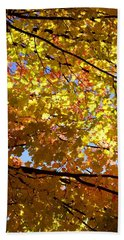 Hand Towel featuring the photograph Layers Of Autumn by Corinne Rhode