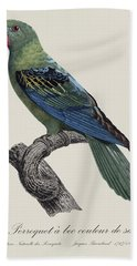 Le Perroquet A Bec Couleur De Sang / Great-billed Parrot - Restored 19thc. Illustration By Barraband Hand Towel