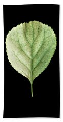 Leaf 19 Bath Towel