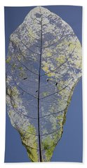 Bath Towel featuring the photograph Leaf by Debbie Cundy