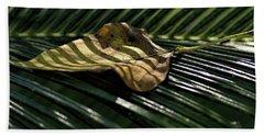 Leaf On Sago Palm Bath Towel