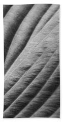 Leaf - Softness Bath Towel by Ben and Raisa Gertsberg