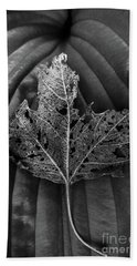 Hand Towel featuring the photograph Leaf Variations by James Aiken
