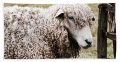 Leicester Longwool Hand Towel