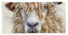 Leicester Longwool Sheep Bath Towel by Linsey Williams