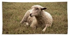 Leicester Sheep In The Dewy Grass Bath Towel
