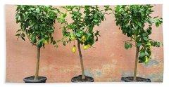 Lemon Trees With Ripe Fruits Bath Towel
