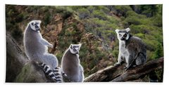 Lemur Family Hand Towel