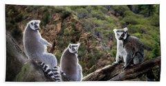 Lemur Family Hand Towel by Melinda Hughes-Berland