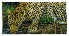 Leopard At A Pond Hand Towel