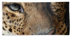 Bath Towel featuring the photograph Leopard Face by Richard Bryce and Family