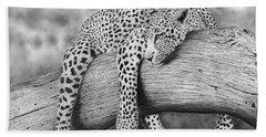 Leopard Relaxing In A Tree Bath Towel