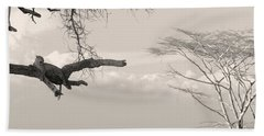 Leopard Resting On A Tree Hand Towel