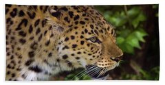 Bath Towel featuring the photograph Leopard by Steve Stuller