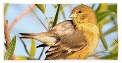 Bath Towel featuring the photograph Lesser Goldfinch by Dan McManus