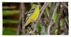 Bath Towel featuring the photograph Lesser Goldfinch H57 by Mark Myhaver
