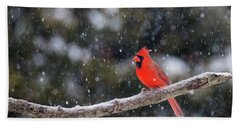 Bath Towel featuring the photograph Let It Snow by Mircea Costina Photography