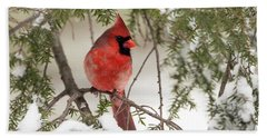 Leucistic Northern Cardinal Bath Towel