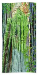 Life In A Redwood Forest Hand Towel