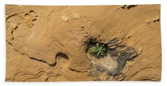 Life On Bare Rock - Delicate Plants On Rough Limestone Bath Towel