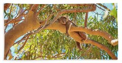 Hand Towel featuring the photograph Life's Hard, Yanchep National Park by Dave Catley