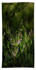 Light And Shadows On Common Heathers Hand Towel