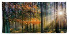 Bath Towel featuring the photograph Light Catcher by Dmytro Korol