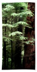 Light On Trees Hand Towel