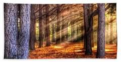 Light Thru The Trees Bath Towel by Sumoflam Photography