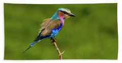 Lilac-breasted Roller Hand Towel