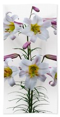 Lilium Regale Bath Towel by Jane McIlroy