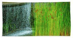 Lilly Pond In Battery Park Hand Towel