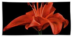 Lily 11018-1 Hand Towel